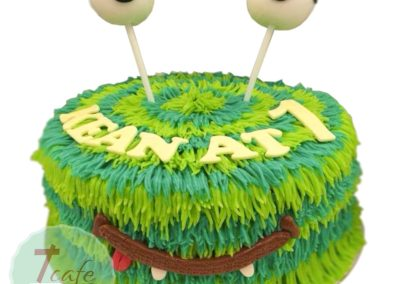 1-layer-fondant-cake-5