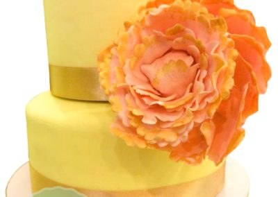 2 Layer Fondant Cake 2
